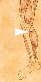 How do you get rid of Fluid Retention and Edema with